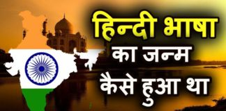 History of Hindi Language in Hindi